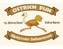 Ostrich Fun